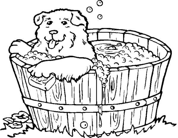 Bath, : Cute Dog Love to Bath Coloring Pages