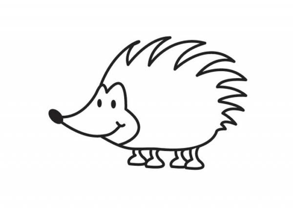 Hedgehogs, : Cute Little Hedgehog Colouring Pages