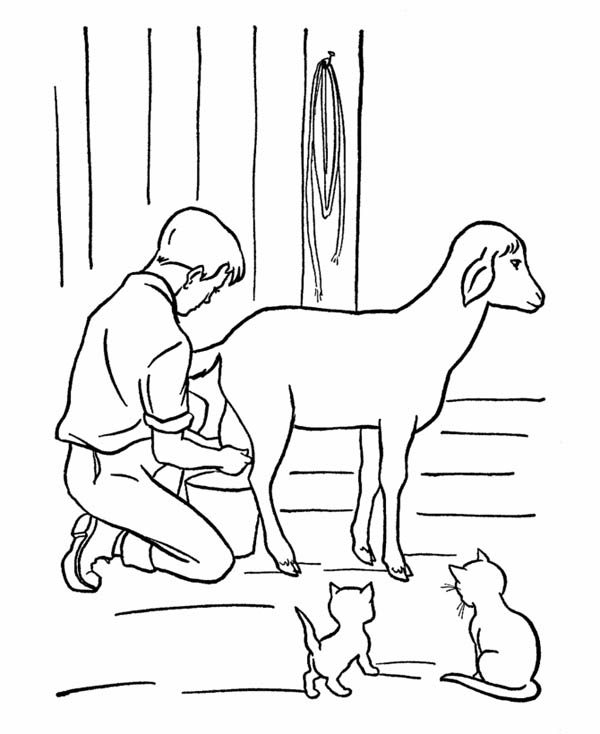 Farm Life, : Farm Life Coloring Pages Milking from a Goat