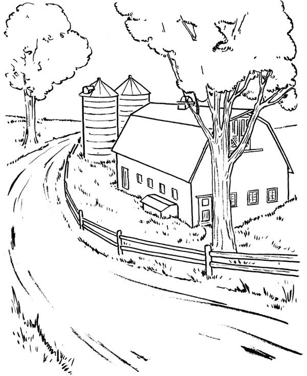 Farm Life At My Uncle House Coloring Pages