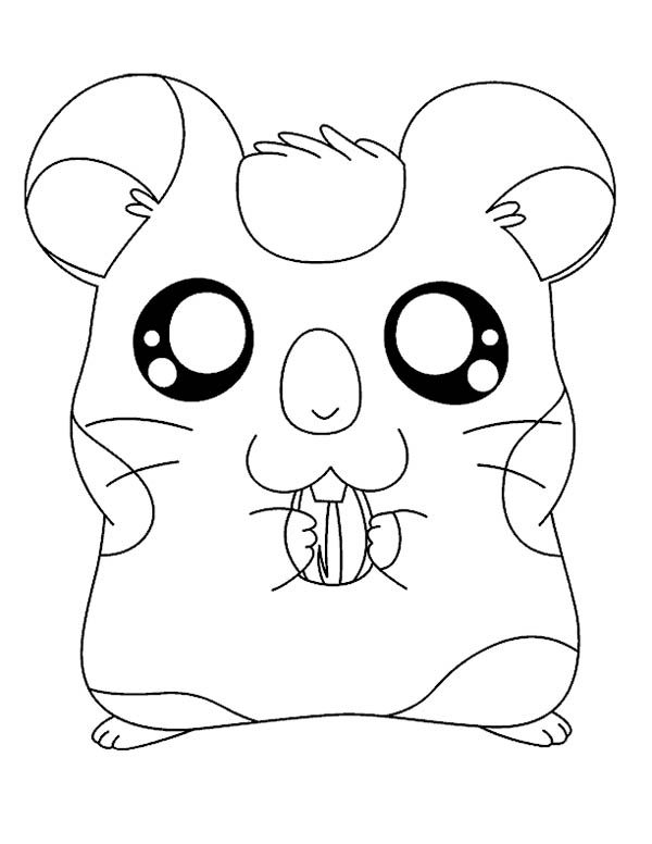 Hamtaro, : Hamtaro Chewing Sunflower Seed Coloring Pages