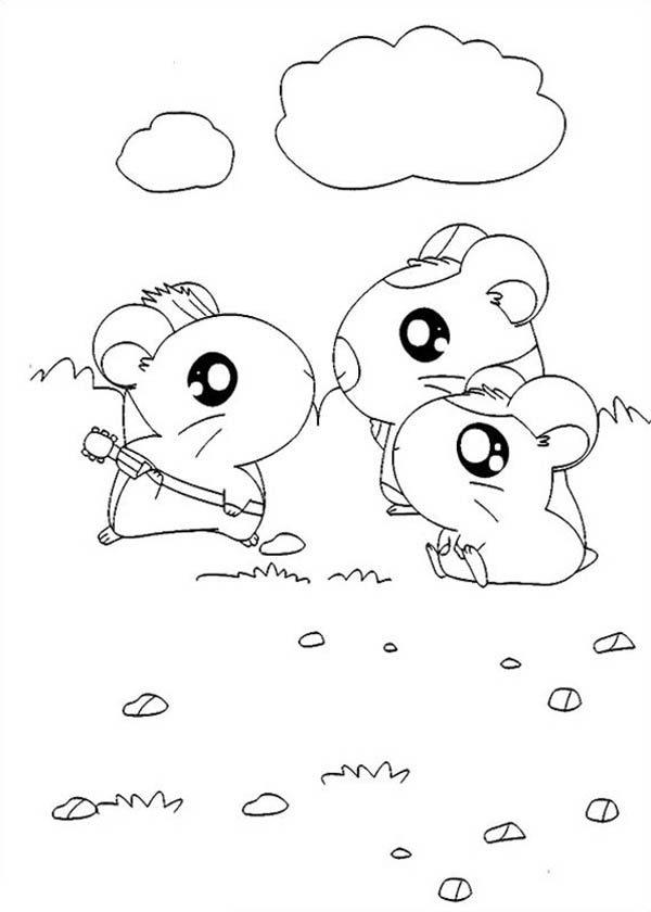 Hamtaro, : Hamtaro Meet His Friends Coloring Pages