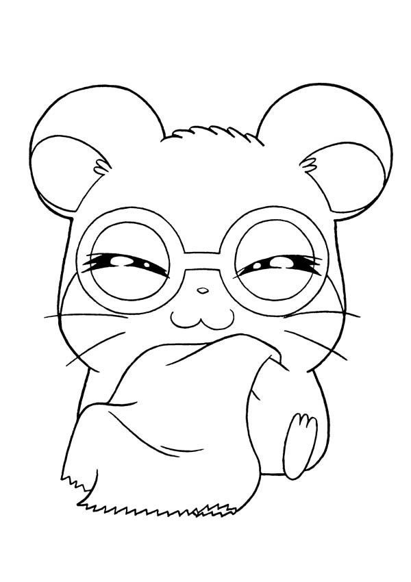 Hamtaro, : Hamtaro Wearing Glassess Coloring Pages