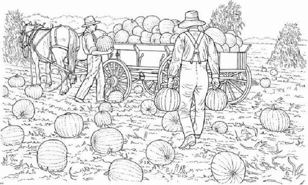 Farm Life, : Harvesting Pumpkin at Farm Life Coloring Pages
