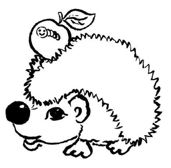 Hedgehogs, : Hedgehog and an Apple with Caterpillar Colouring Pages
