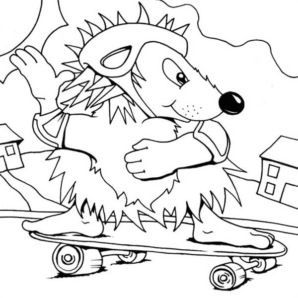 Hedgehogs, : Skateboarding Hedgehog Colouring Pages