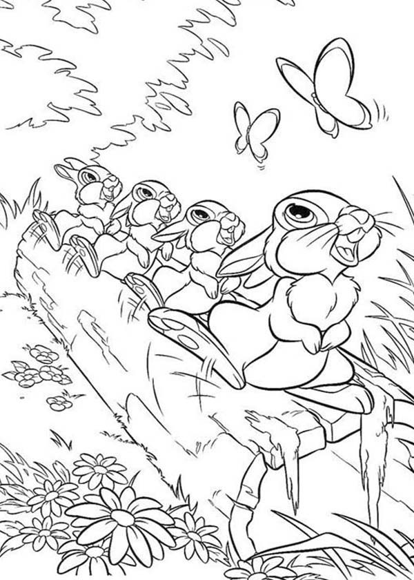 bambi thumper and friends looking ar butterfly in bambi coloring pages
