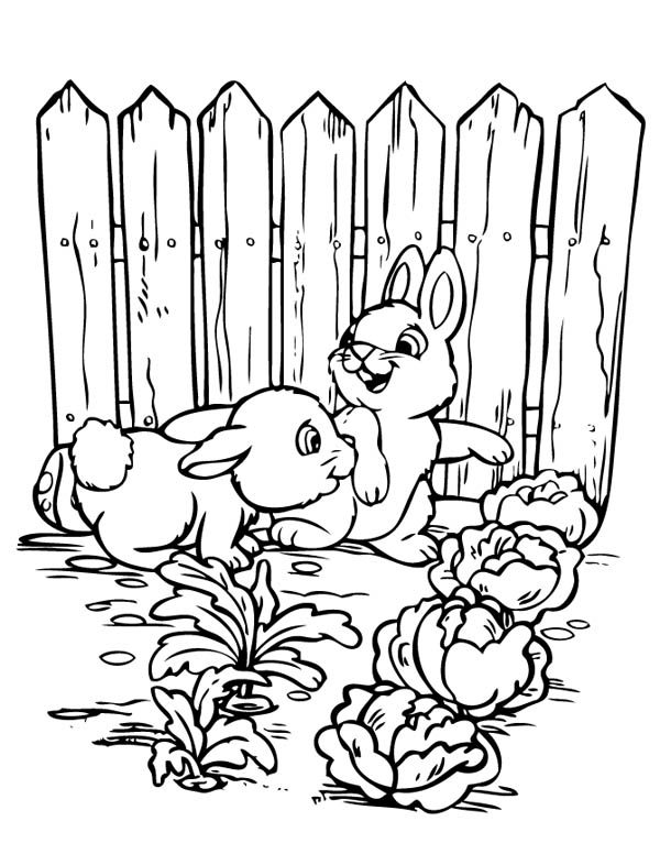 gardening two rabbits in cabbage garden in gardening coloring pages