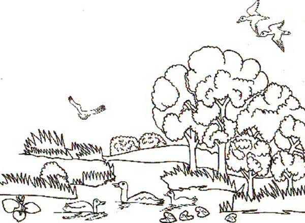 animal habitats landscapes coloring pages