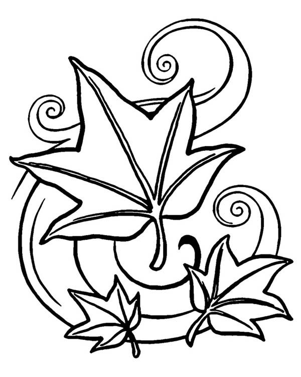 Leaves, : Autumn Leaves Art Coloring Pages