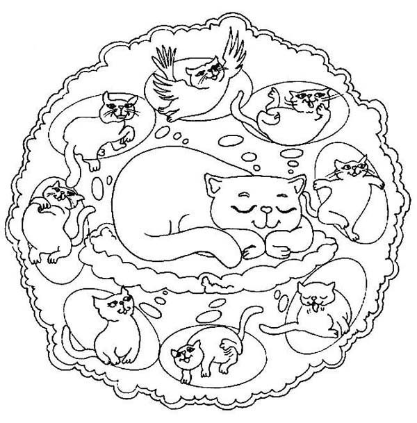 Mandala Animal, : Dreaming Cat Can Fly Mandala Animal Coloring Pages