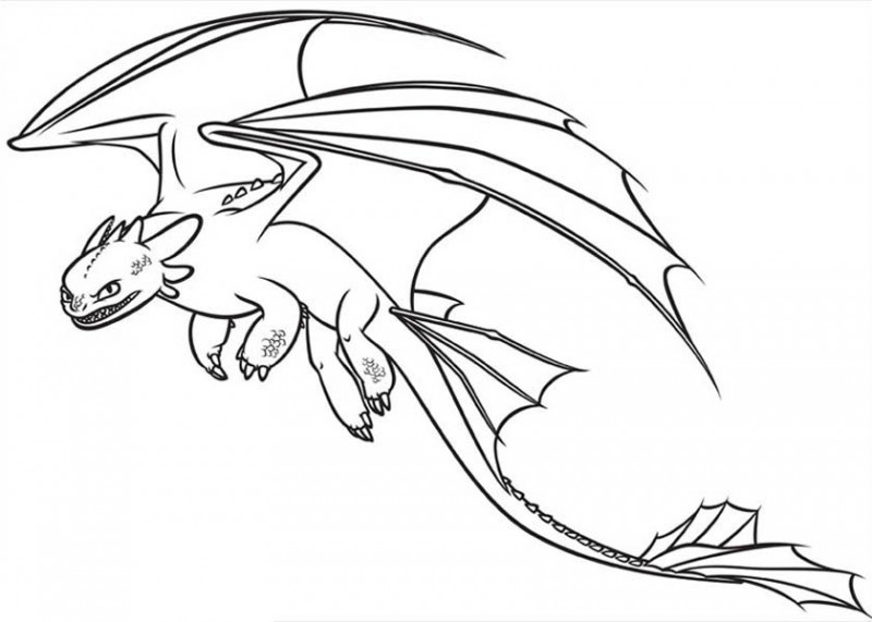 How to Draw Toothless from How to Train Your Dragon Coloring Pages