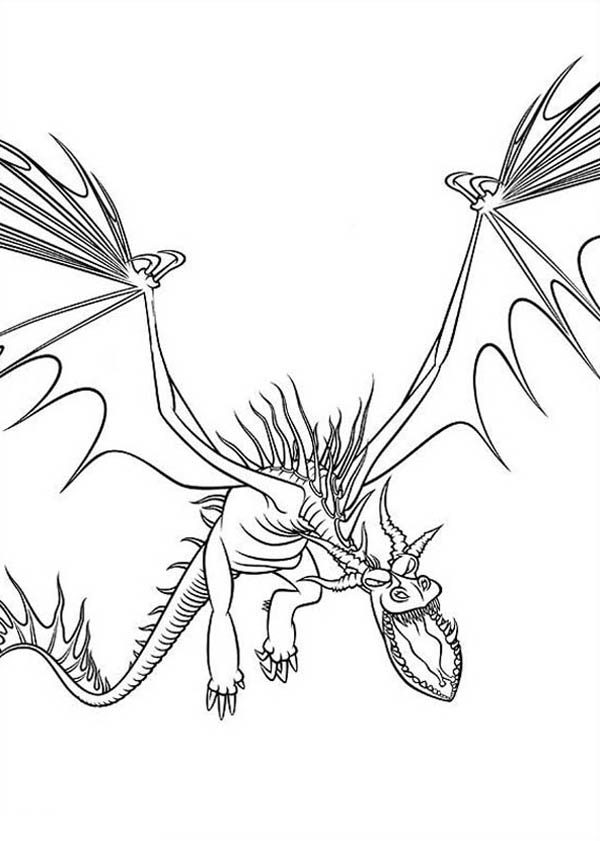 How to Train Your Dragon Drawing Coloring Pages  Bulk Color