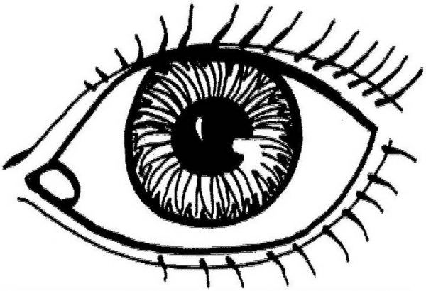 Human Anatomy Eye Coloring Pages