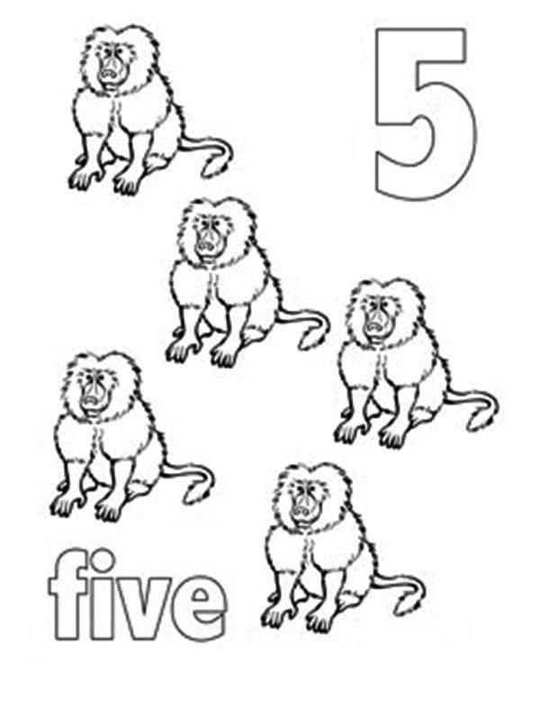 Number 5, : Learn Number 5 with Five Baboons Coloring Page