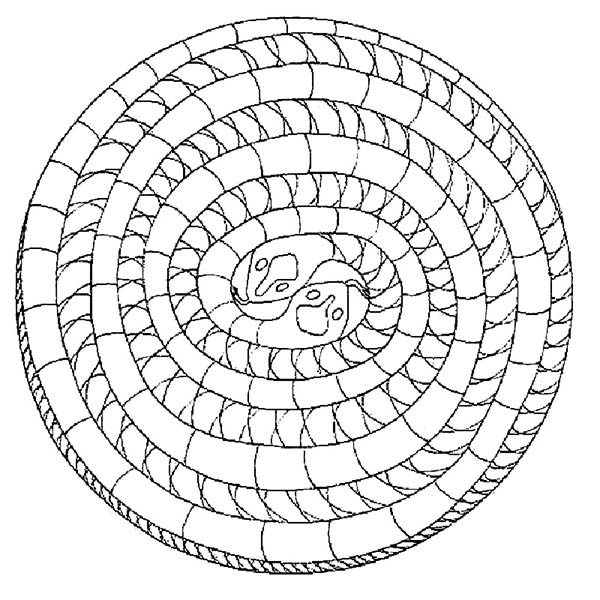Mandala Animal, : Mandala Animal Snake Coloring Pages