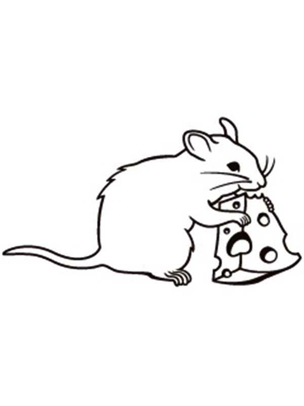 Mouse and Rat, : Mouse and Rat Eating Cheese Coloring Pages