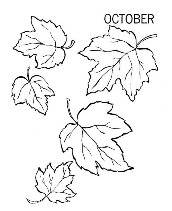 Leaves, : October Autumn Leaves Coloring Pages