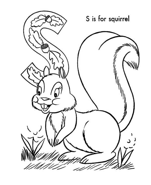 Letter S, : Picture of Squirrel for Learn Alphabet Letter S Coloring Page