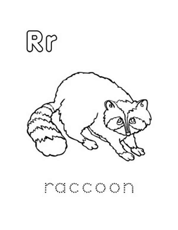 Letter R, : Raccoon is for Capital and Small Letter R Coloring Page