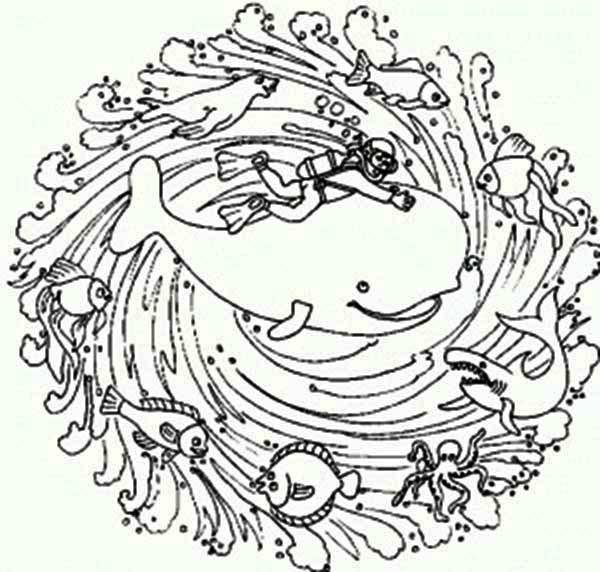 Mandala Animal, : Sea Animals Mandala Animal Coloring Pages