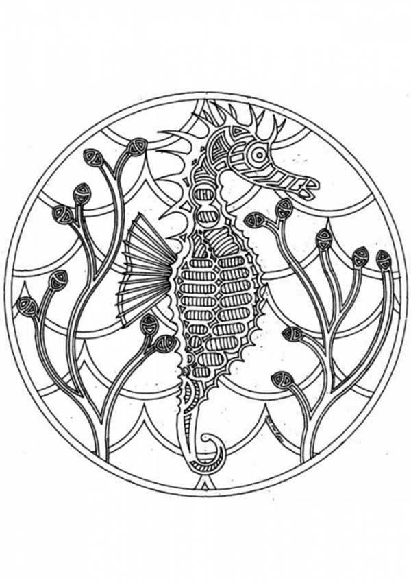 Mandala Animal, : Seahorse Mandala Animal Coloring Pages