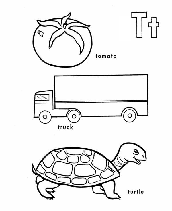 Tomato truck and turtle in learning letter t coloring page bulk letter t tomato truck and turtle in learning letter t coloring page spiritdancerdesigns Choice Image
