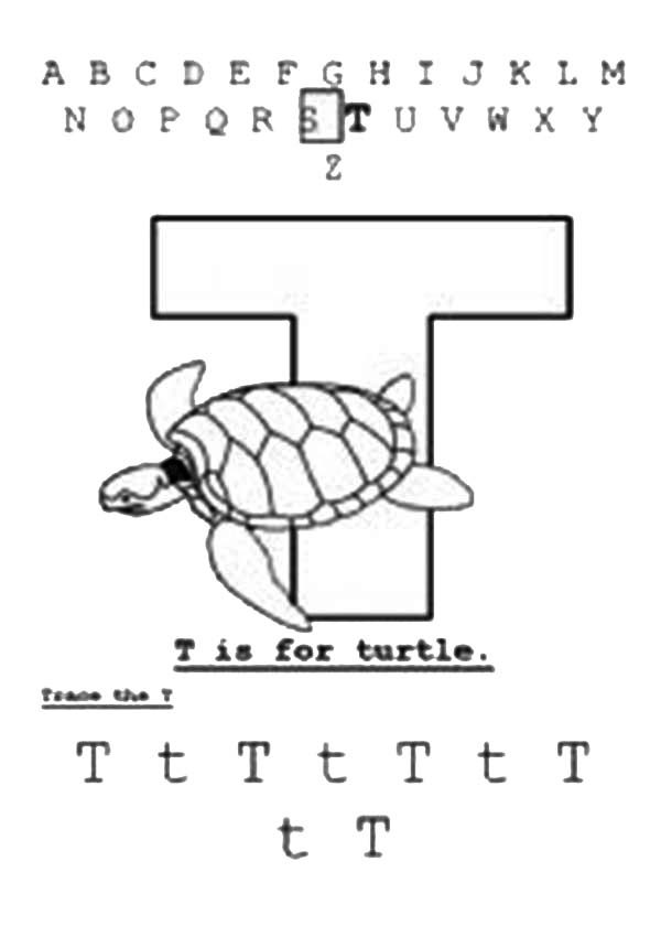 Letter T, : Turtle is for Learn Letter T Coloring Page