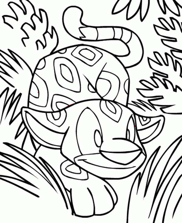 Neopets, : Wild Neopets in the Jungle Coloring Pages