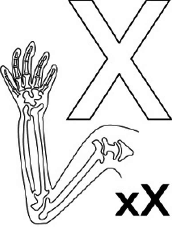 Big And Small Letter X For Ray Coloring Page