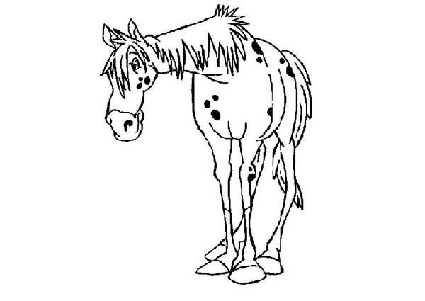 Pippi Longstocking, : Horse of Pippi Longstocking Coloring Pages