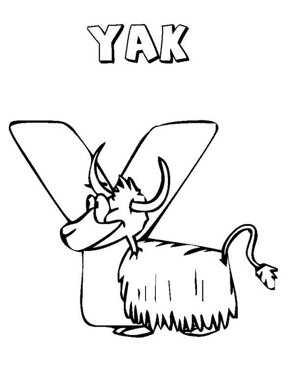 Letter Y, : Letter Y is for Yak Coloring Page