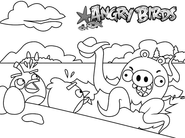 Angry Bird Pigs Octopus Coloring Pages