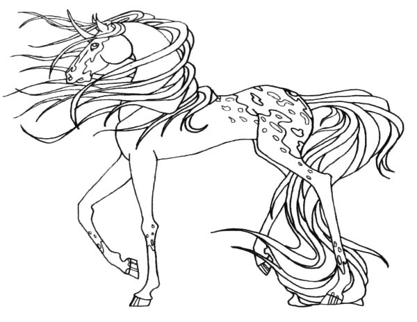 Appalooshorse, : Appalooshorse Deviantart Coloring Pages