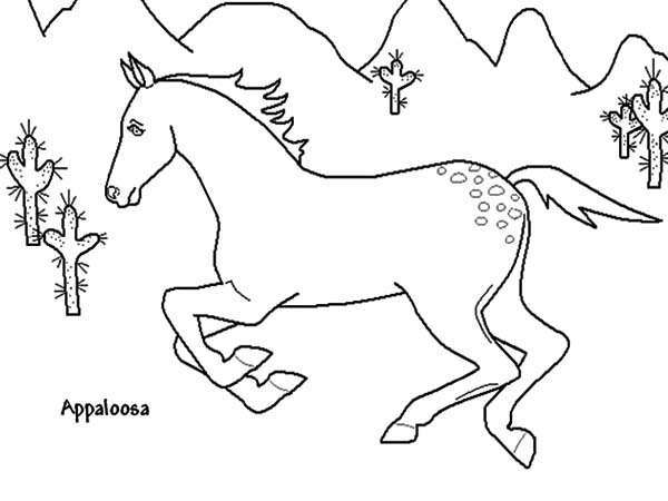 Appalooshorse, : Appalooshorse Running Fast Coloring Pages