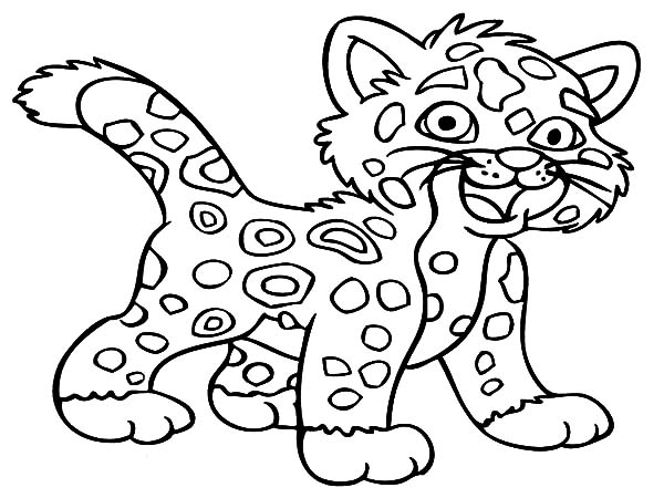 Jaguar, : Baby Jaguar Coloring Pages