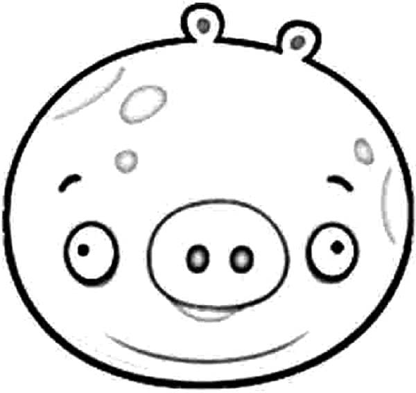 Angry Bird Pigs, : How to Draw Angry Bird Pigs Coloring Pages