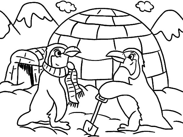 Igloo, : Igloo and Two Penguins Coloring Pages