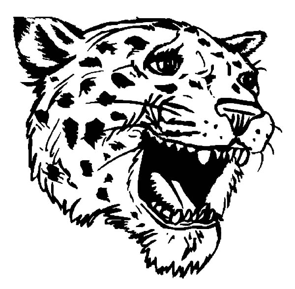 Jaguar, : Jaguar Head Coloring Pages
