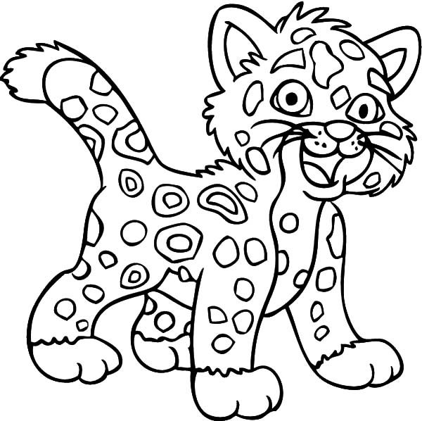 Jaguar, : Laughing Jaguar Coloring Pages