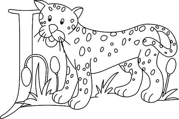 Jaguar, : Letter J is for Jaguar Coloring Pages