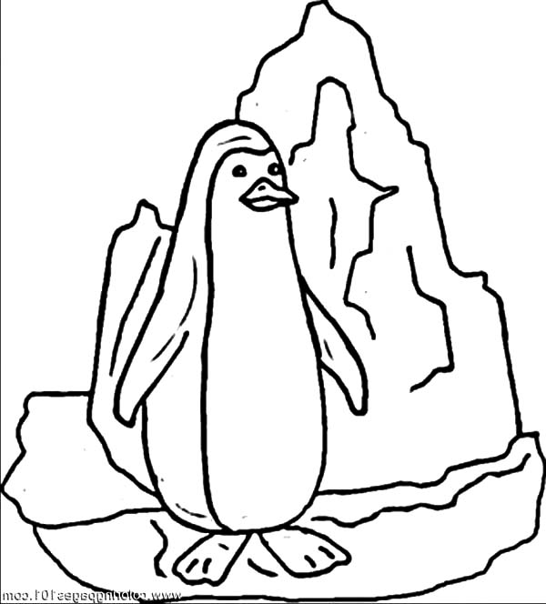 Iceberg, : Penguin Standing on Iceberg Coloring Pages