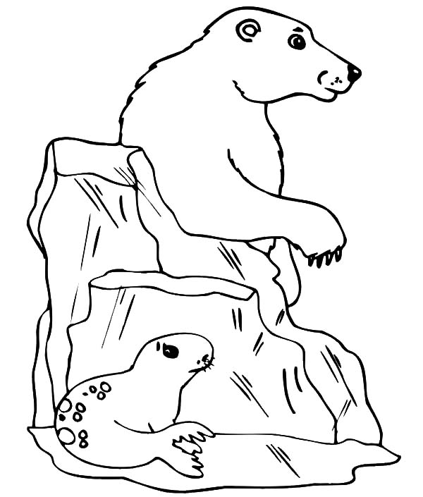 Iceberg, : Seagull Hide from Polar Bear Behind Iceberg Coloring Pages
