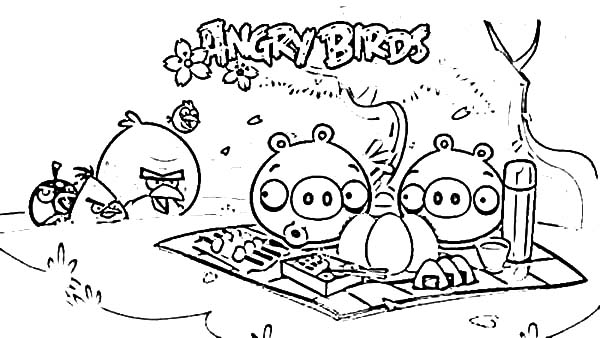 Angry Bird Pigs Animal Coloring Birds Picnic