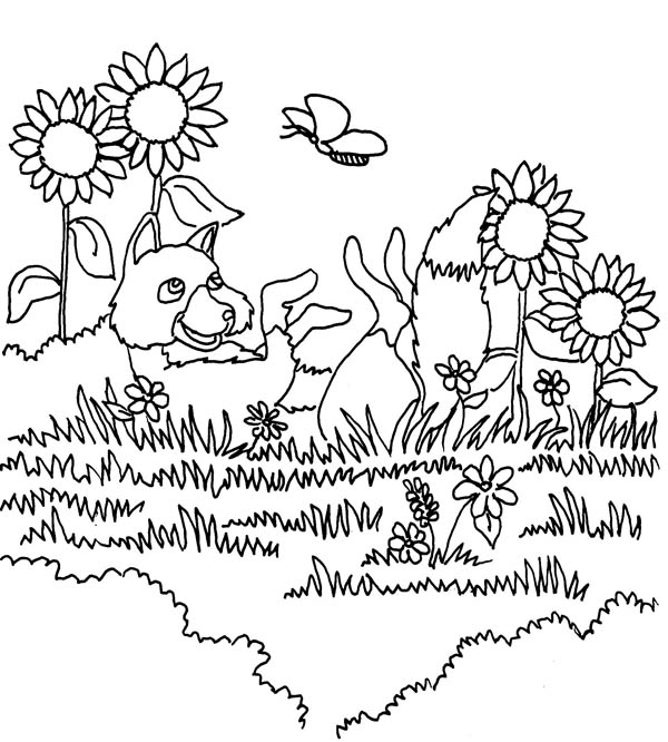 Gardening, : A Wolf Relaxing After Doing Gardening Coloring Pages