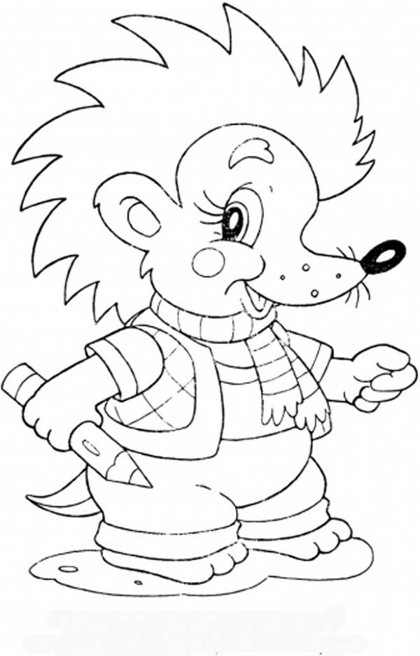 Hedgehogs, : Baby Hedgehog Spikey Hair Coloring Pages