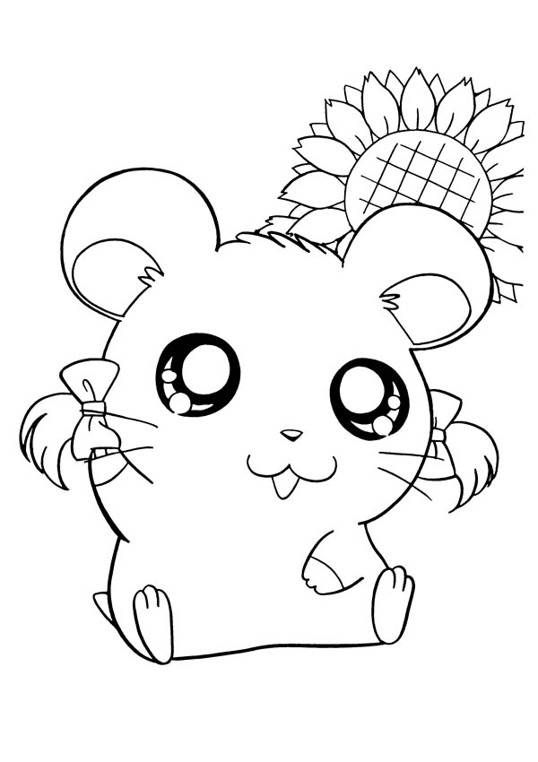 Hamtaro, : Beautiful Hamtaro Girlfriend Coloring Pages
