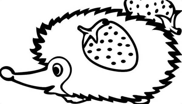 Hedgehogs, : Cute Little Hedgehog Bring Strawberry Coloring Pages