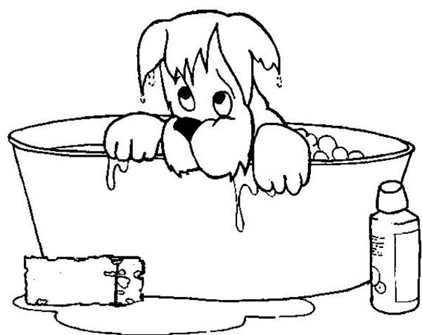 Bath, : Dog Soaking Wet When He Take a Bath Coloring Pages
