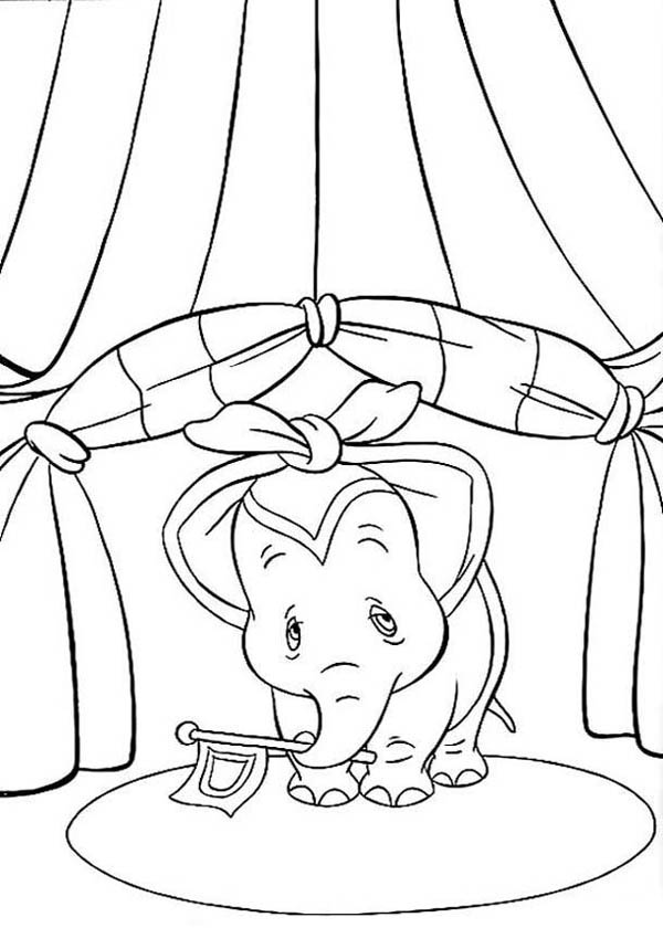 Dumbo the Elephant, : Dumbo the Elephant Holding a Flag Coloring Pages